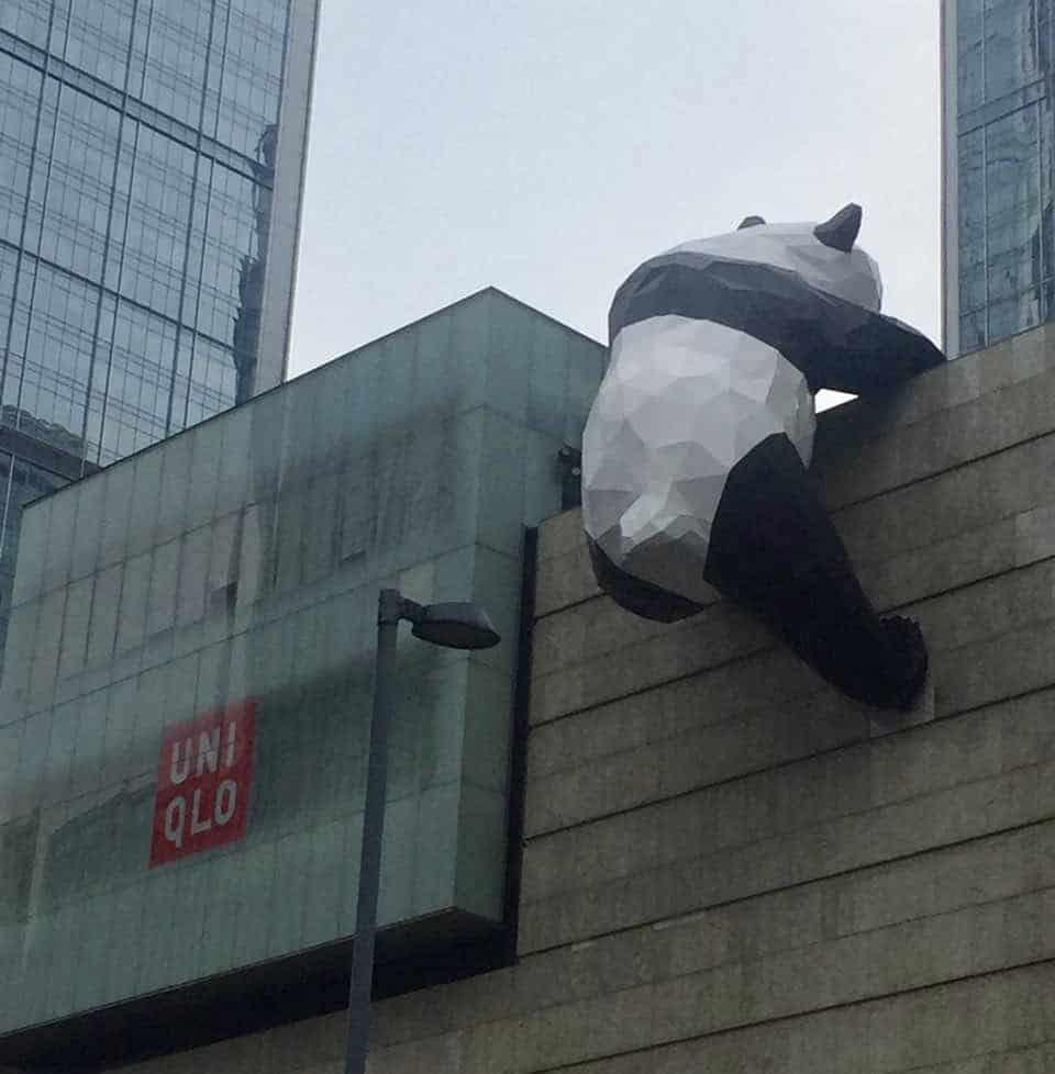 Panda climbing on a Uniqlo store in Chengdu, China