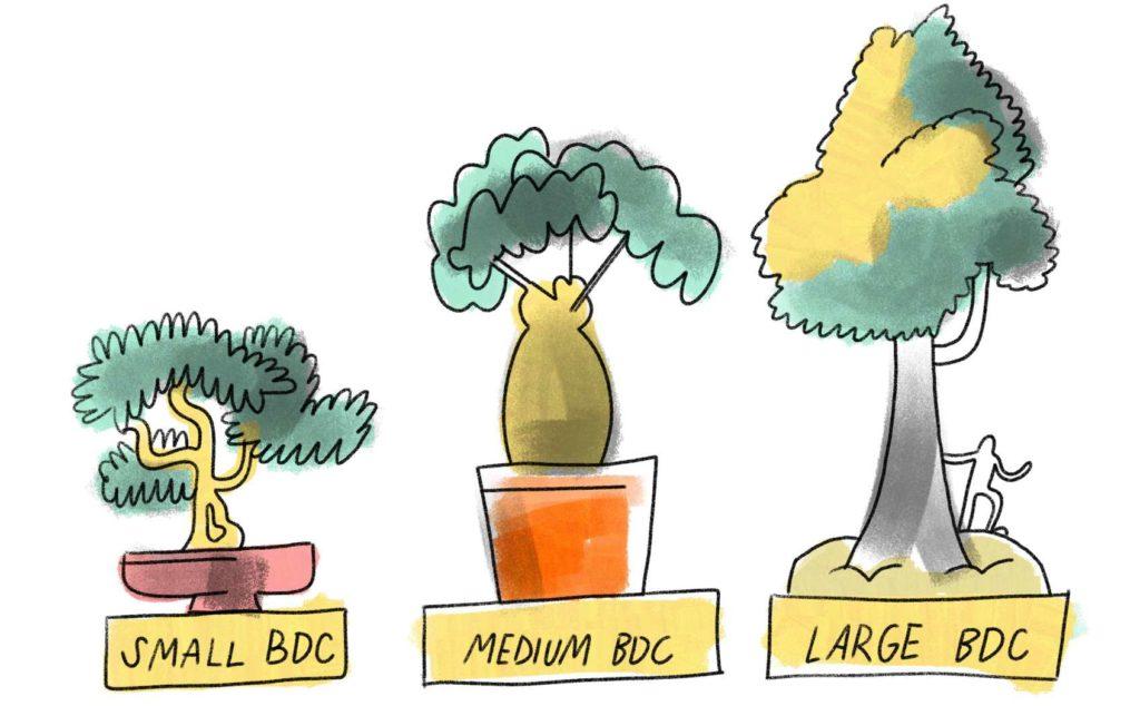 cartoon depicting Small BDC, Medium BDC, and Large BDC