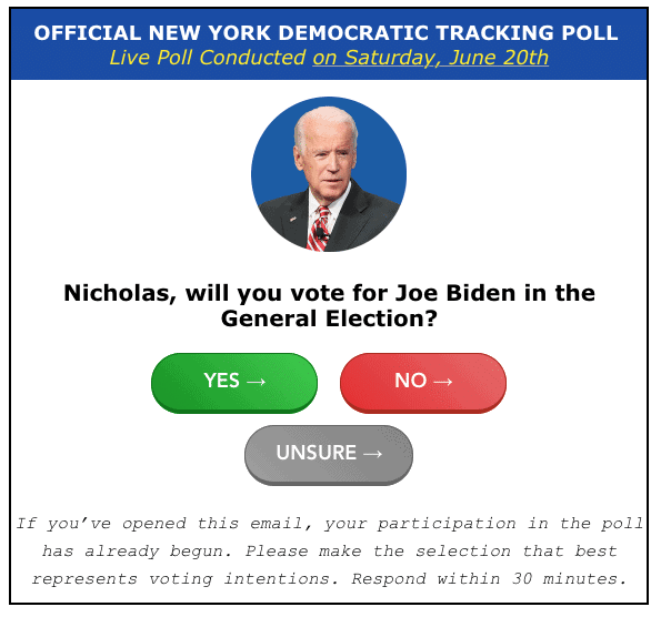 image of Joe Biden, with two buttons to vote for him