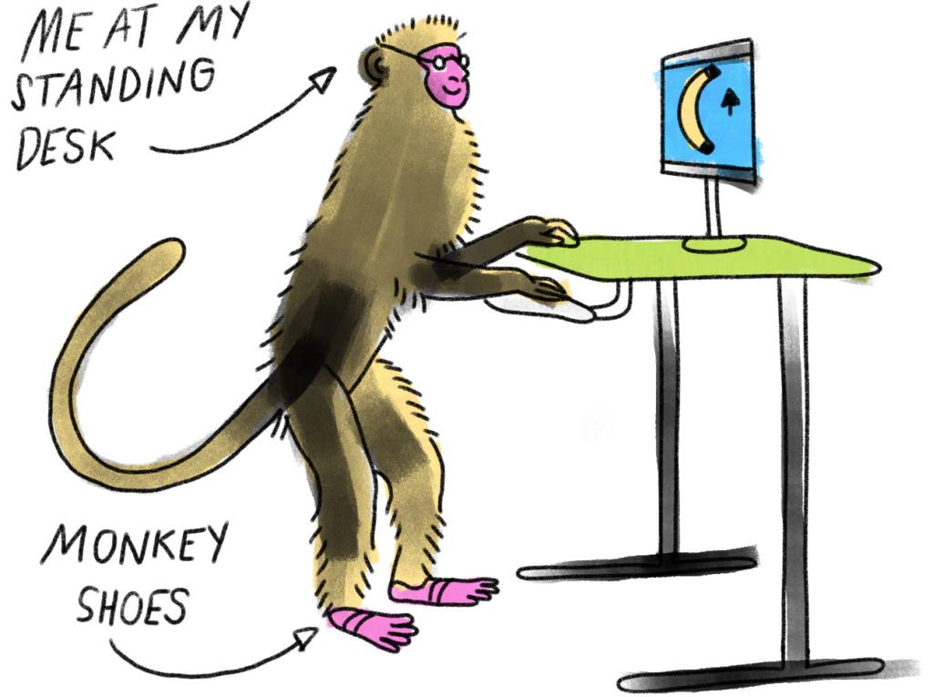 cartoon of monkey working at a standing desk which looks remarkably like me
